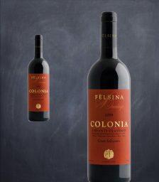 Felsina_Colon2