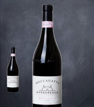 Moccagatta_BricBalin